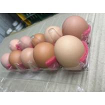 紅殼の 蜜香雞蛋 18盒裝 (一盒10顆)